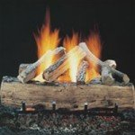 Glass Fronted Fireplaces  Pebble Fireplaces | Real Flame