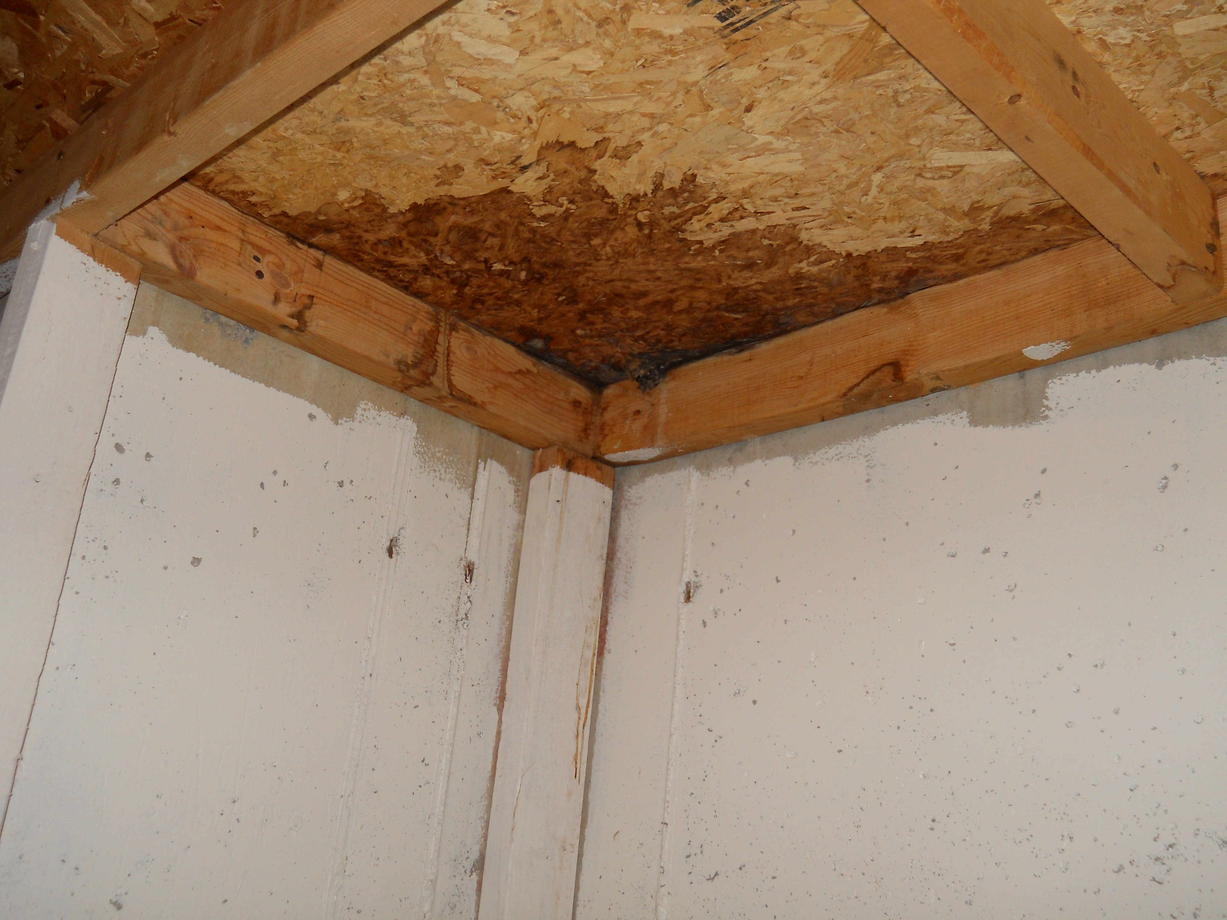 Water Problems from the Chimney and Roof